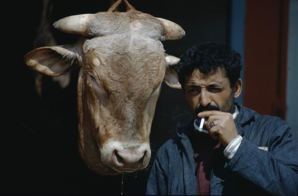 Man och tjurhuvud, Spanien (333h)